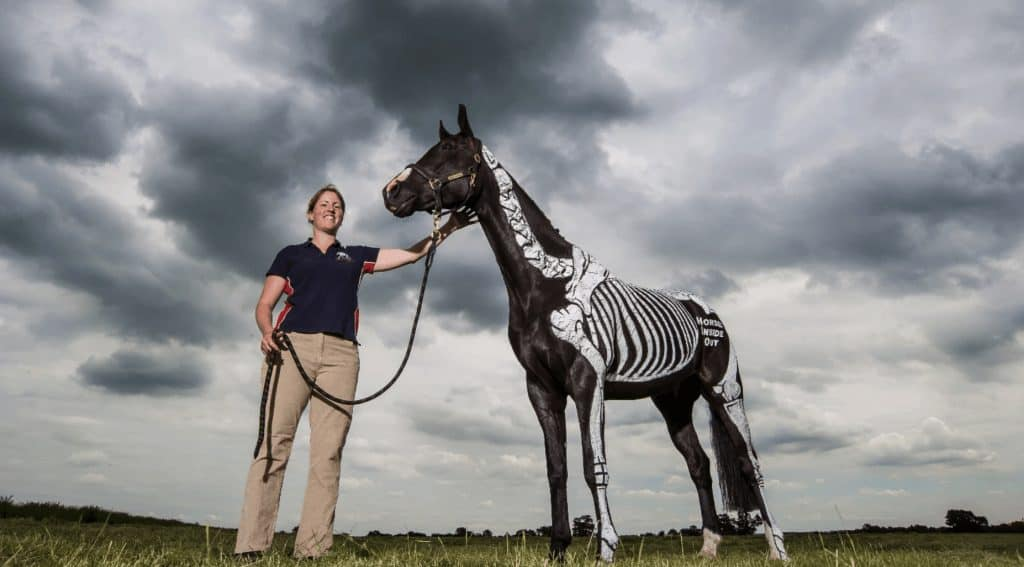 Gillian Higgins with a horse painted with skeleton