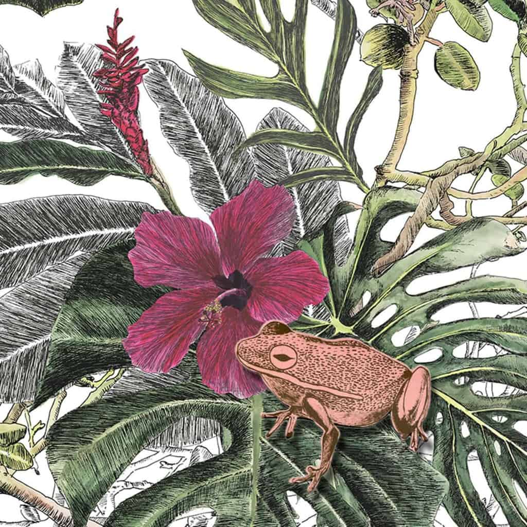 close up of tropical magnetic wallpaper with frog on leaf with flower