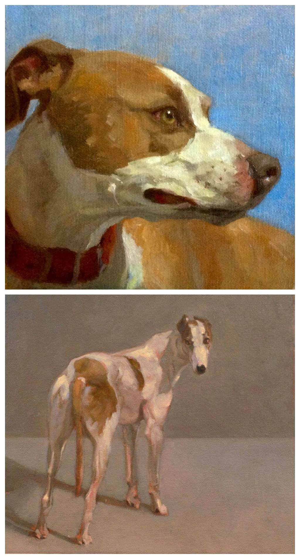 dog portrait paintings by Sandra Flood