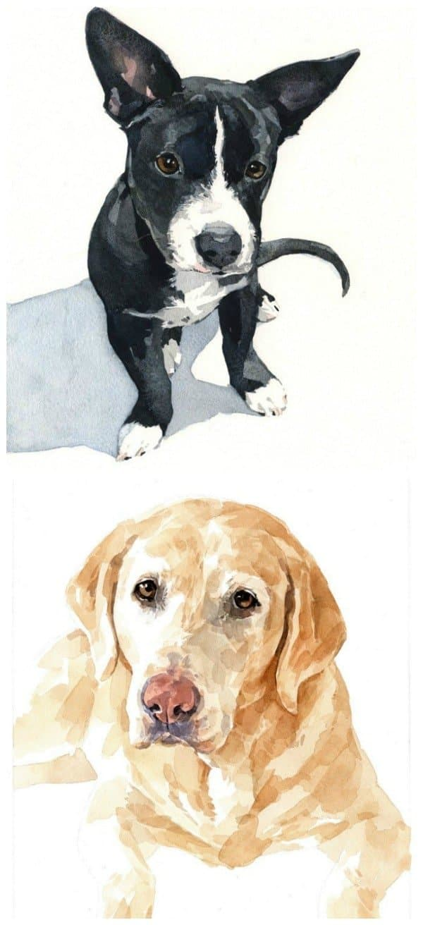 Studio Tuesday watercolor pet portraits